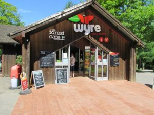 Wyre forest visitors centre